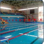 фото пвх покрытия для бассейна