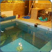 фото бассейна с покрывалом